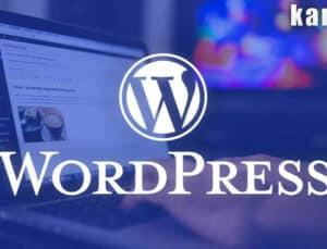 wordpress nedir? nasıl kurulur? neden tercih edilir? *2021