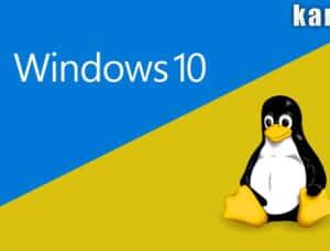 windows sunucu ve linux sunucu arasındaki farklar neler? *2021