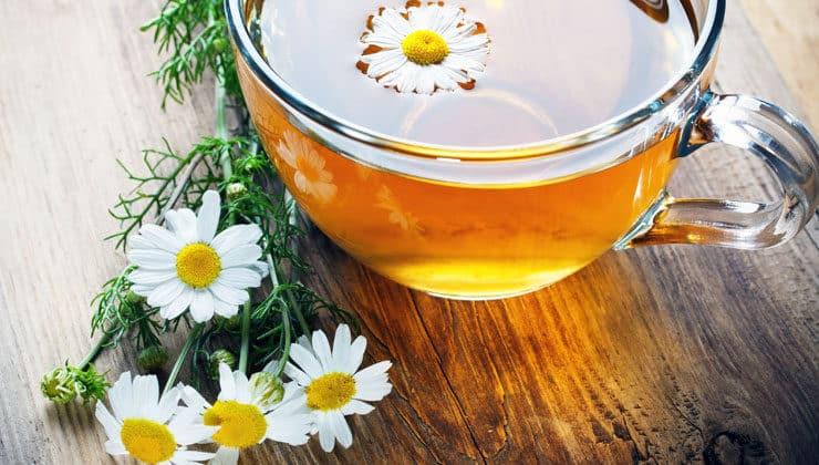 papatya çayı nasıl yapılır
